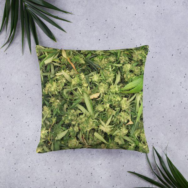 Trim Pillow